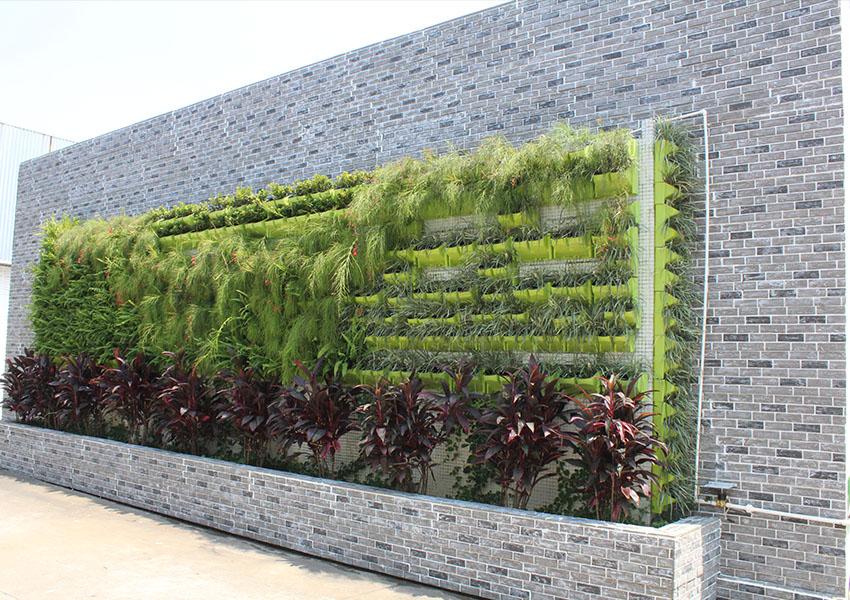ChuangChengYi Array image128